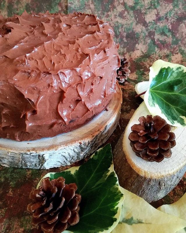 craving chocolate cake (2)
