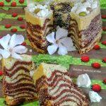 chiffon marmorizzata al pistacchio (3)
