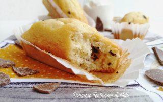 plumcake mini con scaglie di cioccolato