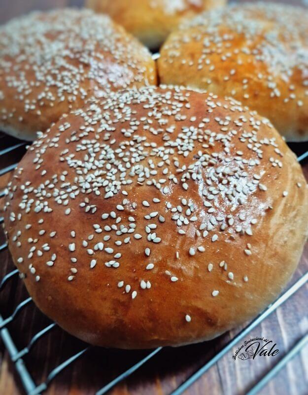 burger buns panini per hamburger (2)