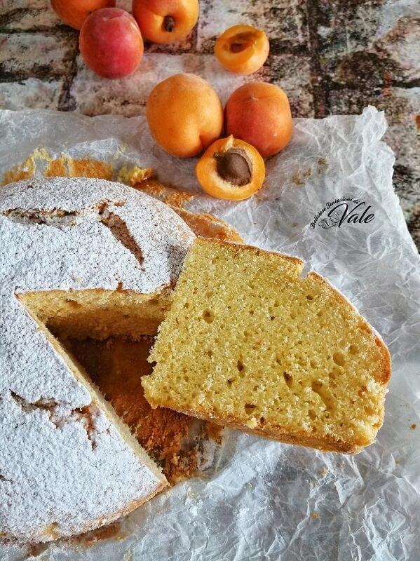 Pan di Albicocche (2)
