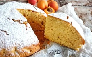 Pan di Albicocche